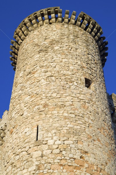 城 塔 市 壁 世界 青 ストックフォト © pedrosala