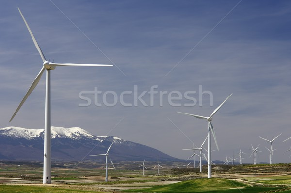のどかな グループ 緑 技術 山 ストックフォト © pedrosala