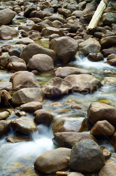 川 ヨセミテ国立公園 風景 旅行 岩 公園 ストックフォト © pedrosala