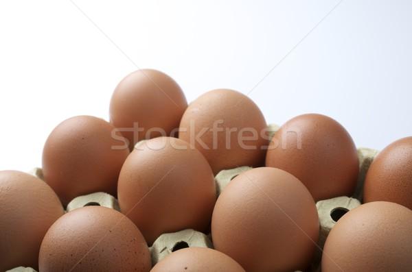 eggs Stock photo © pedrosala