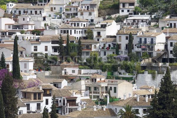 Sąsiedztwo widok z góry starówka miasta kościoła miejskich Zdjęcia stock © pedrosala