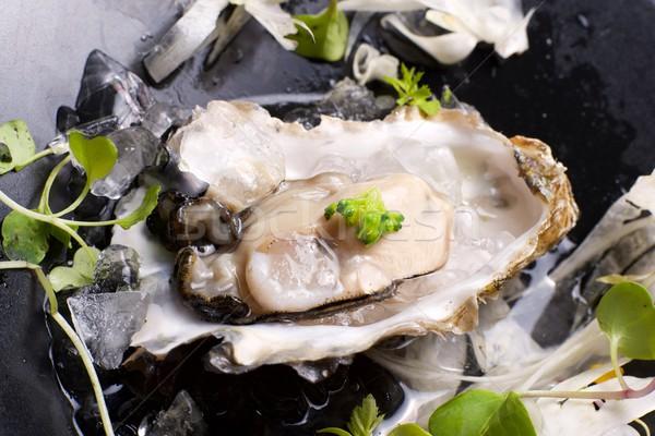 Istiridye yarım kabuk rezene salata deniz yosunu Stok fotoğraf © pedrosala