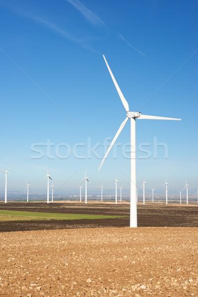 Vento energia elettrici potere produzione campo Foto d'archivio © pedrosala