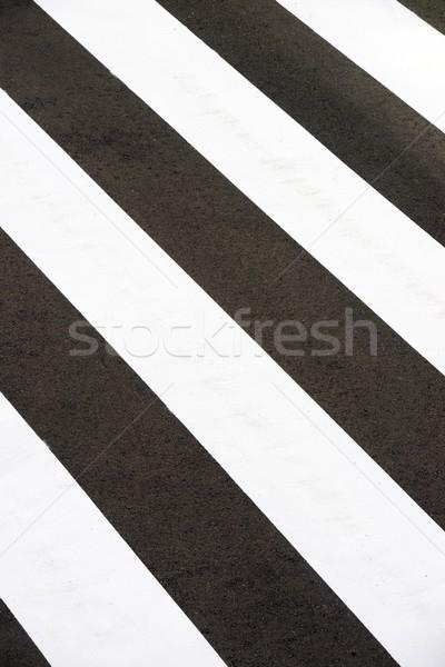 Zebra estrada rua atravessar rodovia tráfego Foto stock © pedrosala