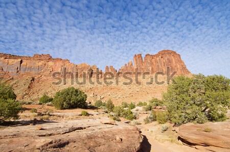Indiai patak égbolt fa természet tájkép Stock fotó © pedrosala