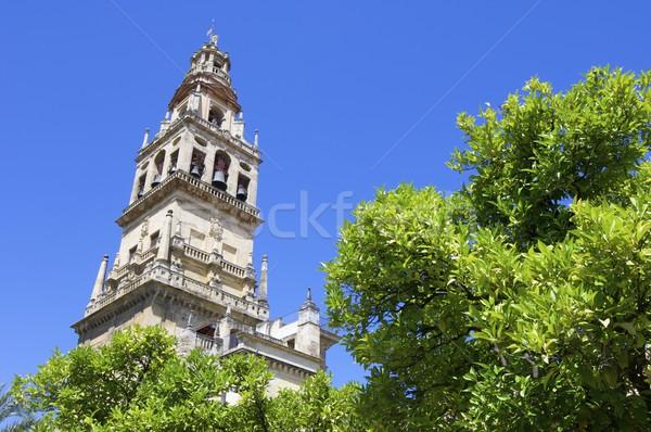 Mecset torony Andalúzia Spanyolország épület templom Stock fotó © pedrosala