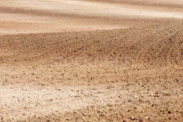 Farmland Stock photo © pedrosala