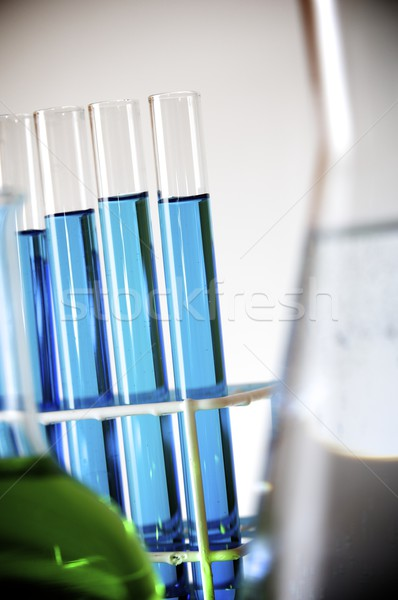 test tubes Stock photo © pedrosala