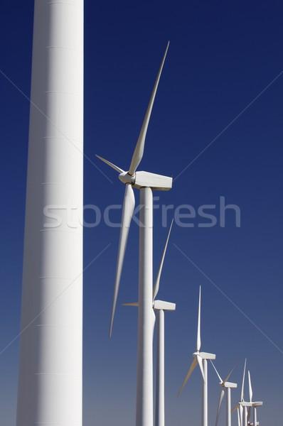 windmills group Stock photo © pedrosala