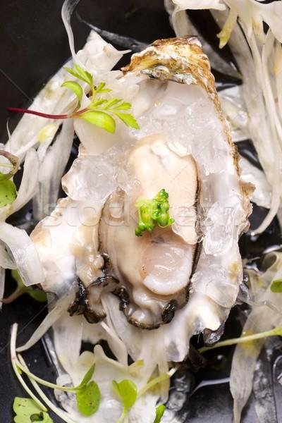 Oester half shell venkel salade zeewier Stockfoto © pedrosala