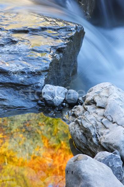 Renkli dere dağ vadi güzellik kaya Stok fotoğraf © pedrosala