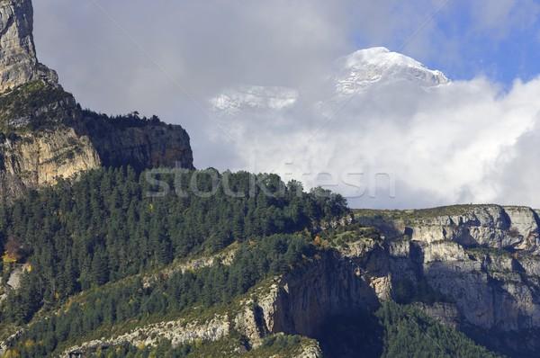 snowy mountains Stock photo © pedrosala