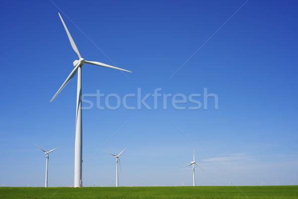ветер энергии электрических власти производства трава Сток-фото © pedrosala