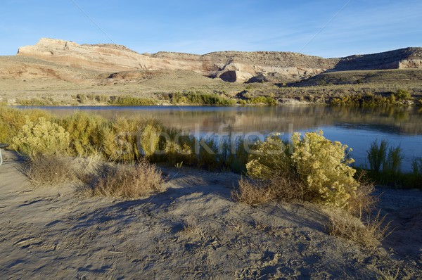 Colorado river Stock photo © pedrosala