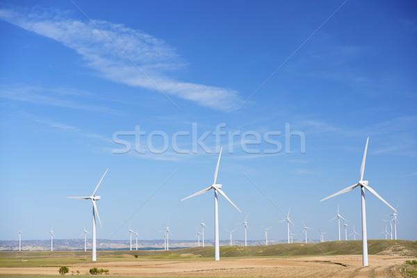 Wind energie elektrische macht productie veld Stockfoto © pedrosala