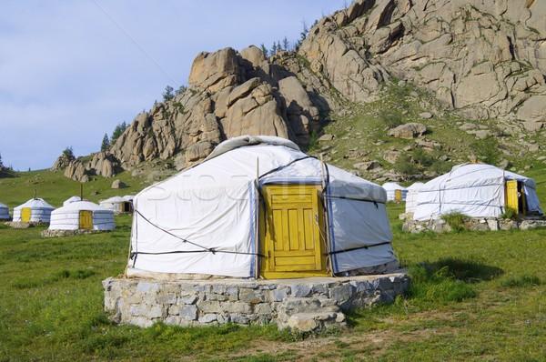 Parque Mongólia grama natureza montanha verde Foto stock © pedrosala
