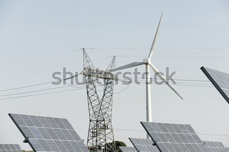 Hernieuwbare energie fotovoltaïsche energie productie natuur technologie Stockfoto © pedrosala