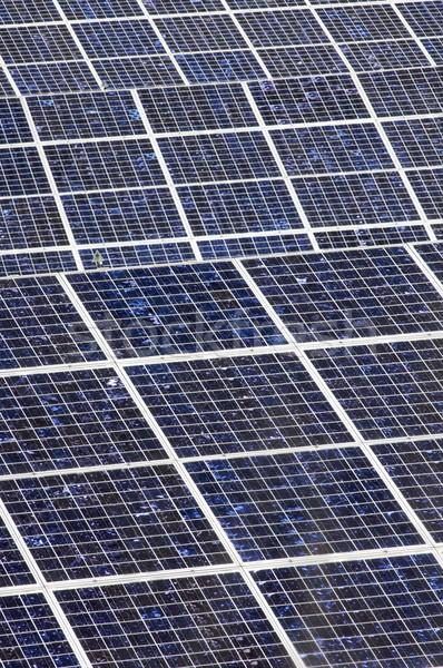 Photovoltaic panels Stock photo © pedrosala