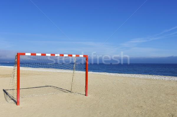 goal Stock photo © pedrosala