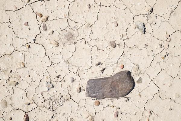 Aszály föld magas döntés Föld halott Stock fotó © pedrosala