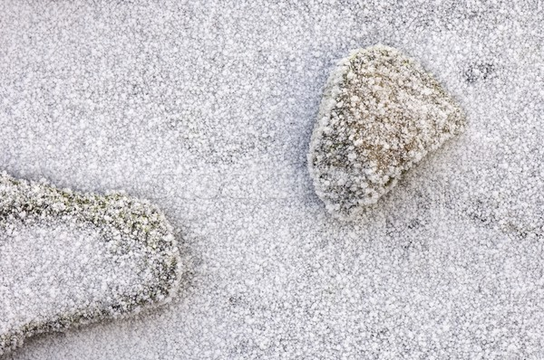 two stones with frost Stock photo © pedrosala