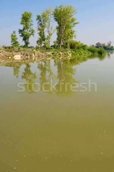 Víz fák vízi tájkép folyó fa Stock fotó © pedrosala