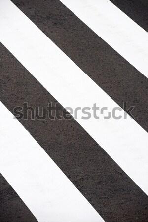 ストックフォト: シマウマ · 道路 · 通り · クロス · 道路 · トラフィック
