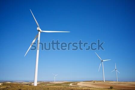 wind field Stock photo © pedrosala