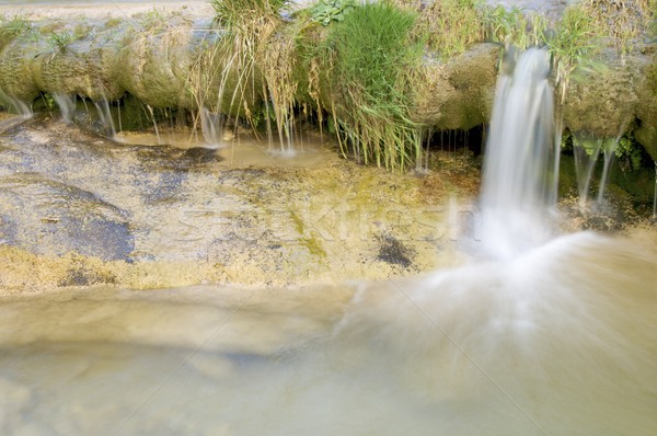 river Stock photo © pedrosala