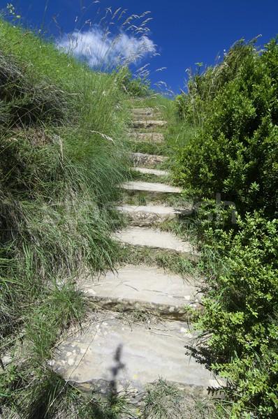 steps Stock photo © pedrosala