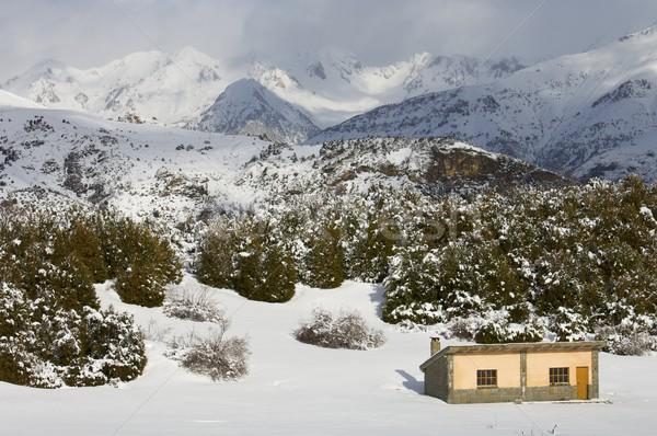 mountain hut Stock photo © pedrosala