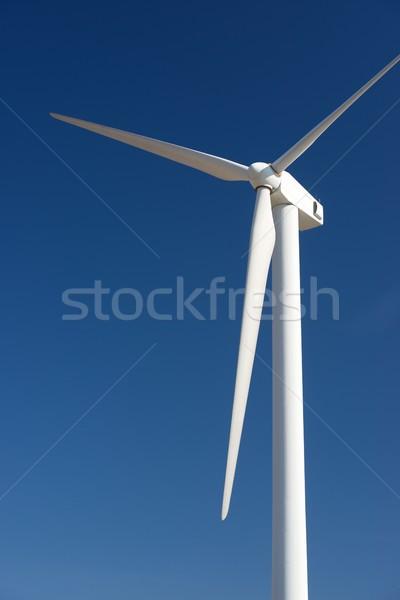 Wind energy concept Stock photo © pedrosala