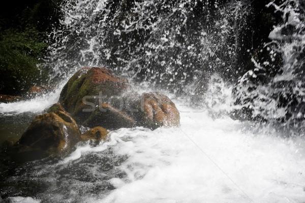 водопада долины воды весны пейзаж Сток-фото © pedrosala