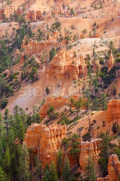 Kanion igły parku górskich pomarańczowy czerwony Zdjęcia stock © pedrosala