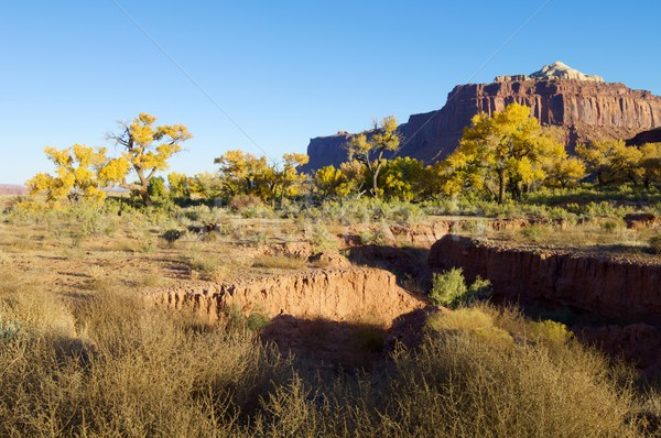 Indian Creek Stock photo © pedrosala