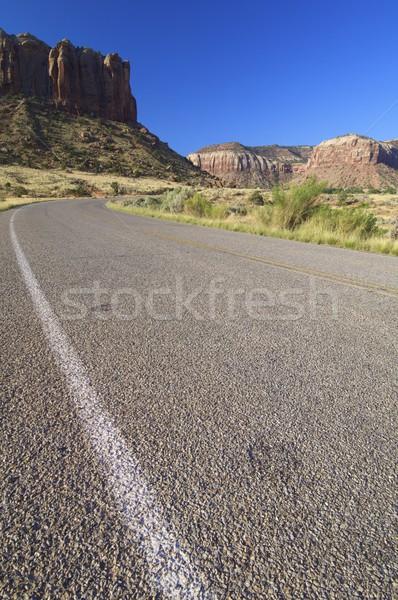 Road Stock photo © pedrosala