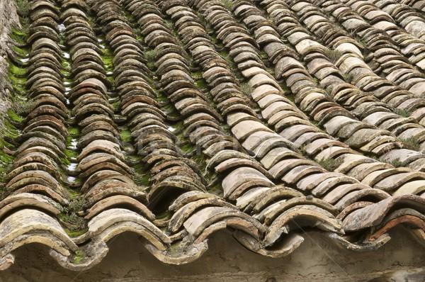 roof view Stock photo © pedrosala