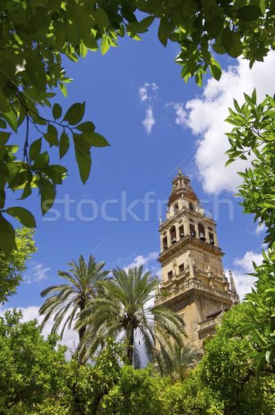 Mecset torony Andalúzia Spanyolország épület város Stock fotó © pedrosala