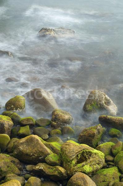 pebble beach Stock photo © pedrosala