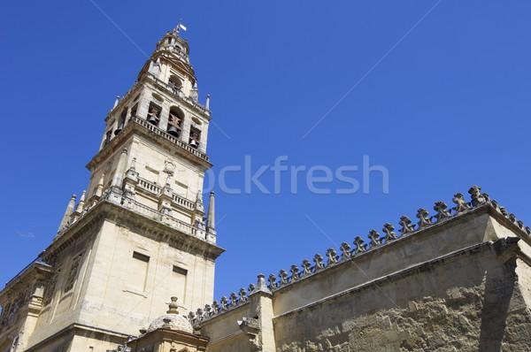 モスク 塔 アンダルシア スペイン 建物 教会 ストックフォト © pedrosala