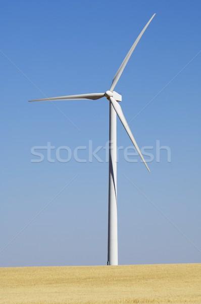 Wind energie moderne windmolen hernieuwbare elektrische Stockfoto © pedrosala