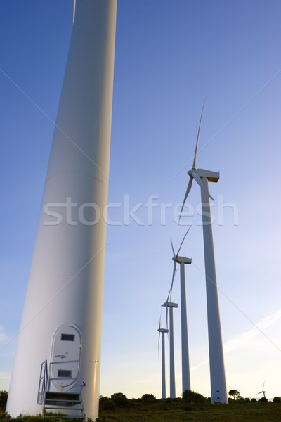 Rüzgâr enerji elektrik güç üretim manzara Stok fotoğraf © pedrosala