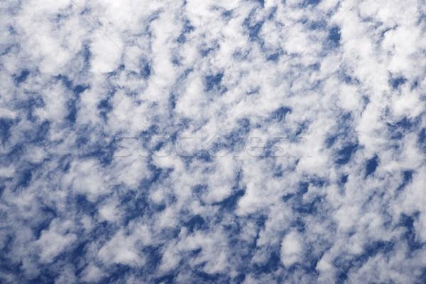 Hemelachtergrond hoog hemel detail wolken Stockfoto © pedrosala
