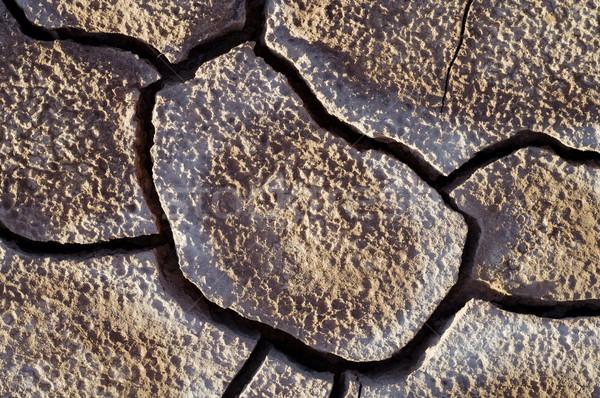 Sár aszály repedések textúra absztrakt ötlet Stock fotó © pedrosala