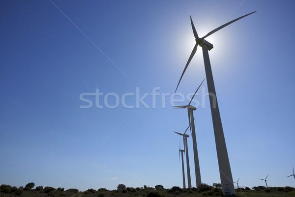 ветер энергии силуэта группа возобновляемый электрических Сток-фото © pedrosala