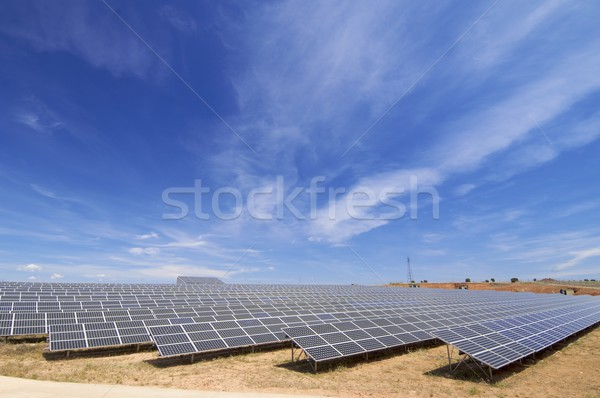 solar energy field Stock photo © pedrosala