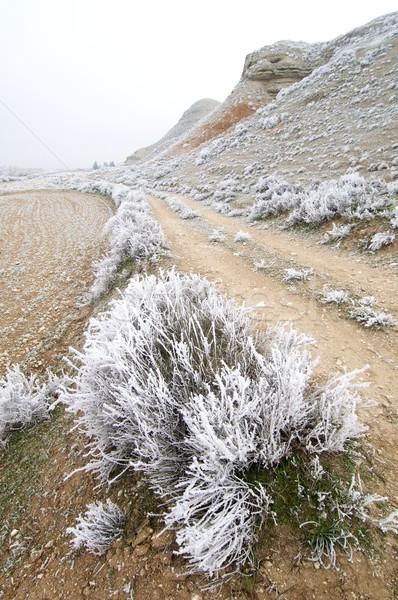 冷ややかな 風景 テクスチャ 雲 雪 冬 ストックフォト © pedrosala