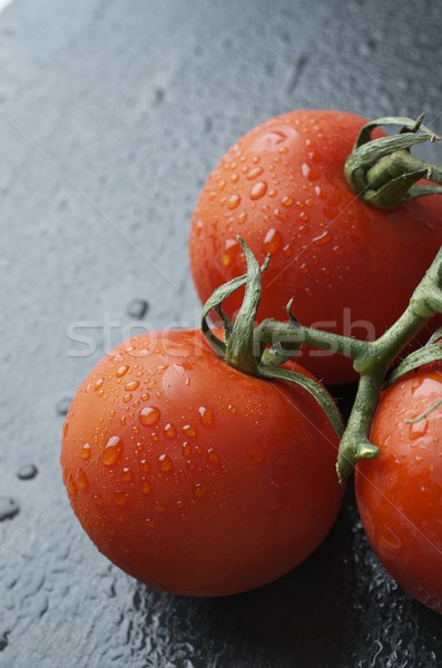 tomatoes Stock photo © pedrosala