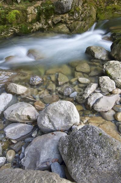 mountain river Stock photo © pedrosala