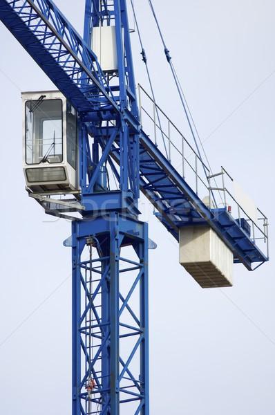 Blue crane Stock photo © pedrosala